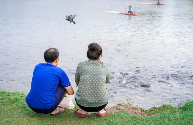 Het aziatische hogere paar heeft samen activiteit, voedend vissen bij de vijver