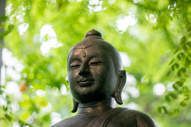 Het beeld groene natuurlijke achtergrond van boedha