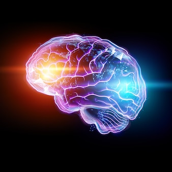 Het beeld van het menselijk brein