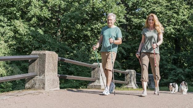 Het bejaarde paar die lange stokken van trekkingspolen gebruiken