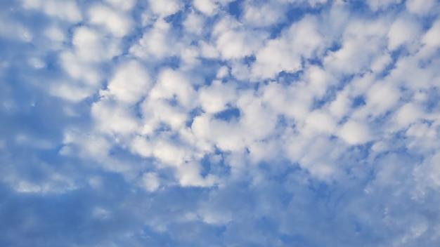 Het blauwe luchtfoto landschap