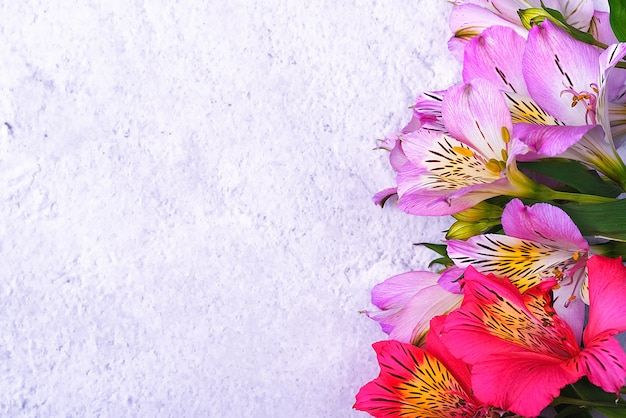 Het boeket orchideeën is mooi, fris, felrood en lila op een lichte achtergrond.
