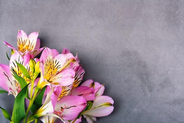 Het boeket orchideeën is mooi, fris, helder lila op een grijze achtergrond.