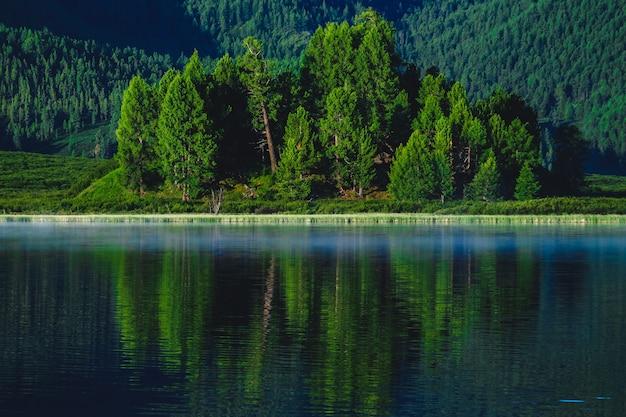 Het bos wordt weerspiegeld in de wateren van een bergmeer in het ulagansky-district van de altai-republiek, rusland
