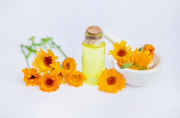 Het calendula-extract. medicinale planten.