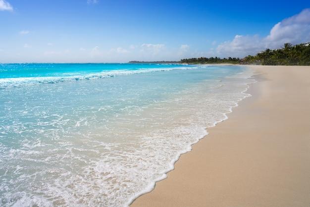 Het caribische strand van akumal in riviera maya