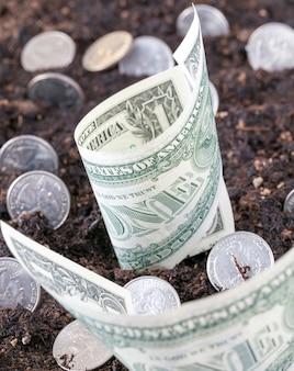 Het concept van de groei van amerikaanse munten en contante bankbiljetten uit de landbouwgrond, een close-upidee van de groei van het inkomen uit de landbouw