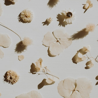 Het droge patroon van bloembloemblaadjes op stoffig grijs.
