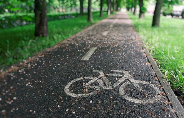 Het fietspad tussen de bomen na de regen