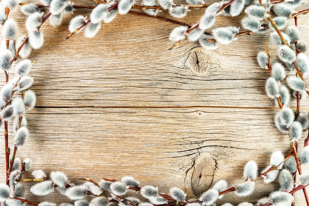 Het frame van wilgenkatjes op rustieke geweven houten achtergrond