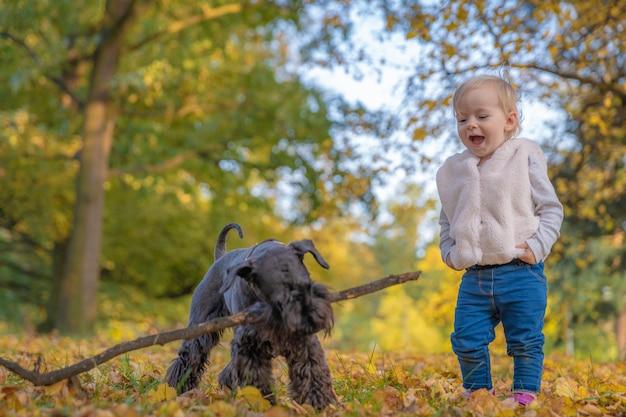Het gelukkige kind met hun hond zwarte schnauzer geniet van spel in de herfstpark