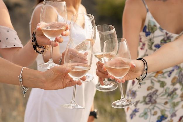 Het gezelschap van vriendinnen geniet van een zomerse picknick en heft de glazen op met wijn