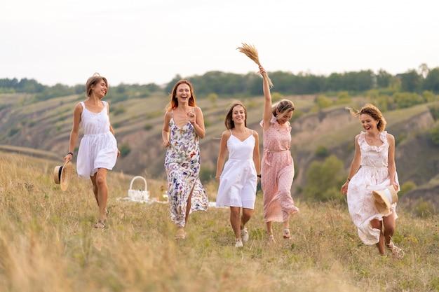Het gezelschap van vrolijke vriendinnen heeft een geweldige tijd samen op een picknick op een schilderachtige plek
