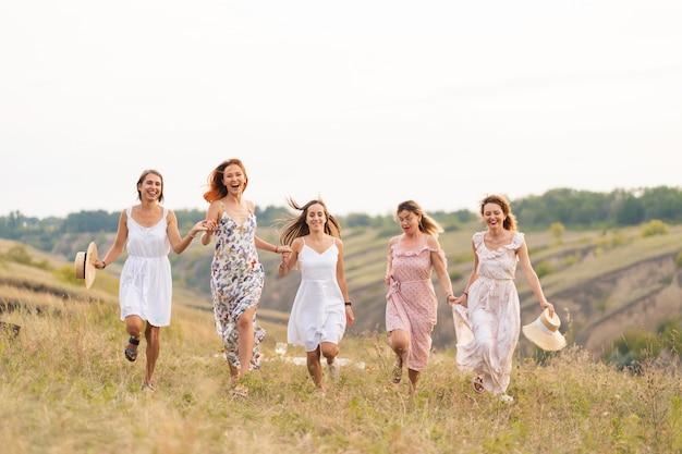 Het gezelschap van vrolijke vriendinnen heeft een geweldige tijd samen op een picknick