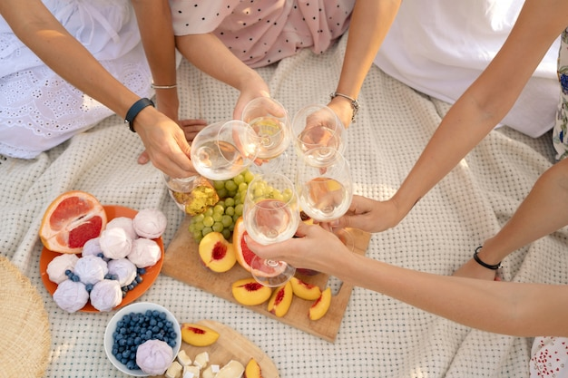 Het gezelschap van vrouwelijke vrienden geniet van een zomerpicknick en hef glazen met wijn