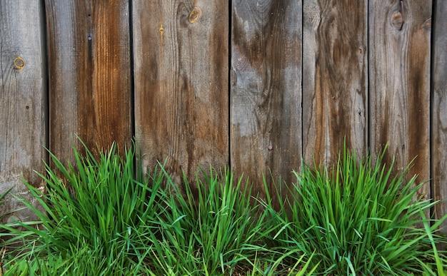 Het groene gras van de lente over houten omheiningsachtergrond