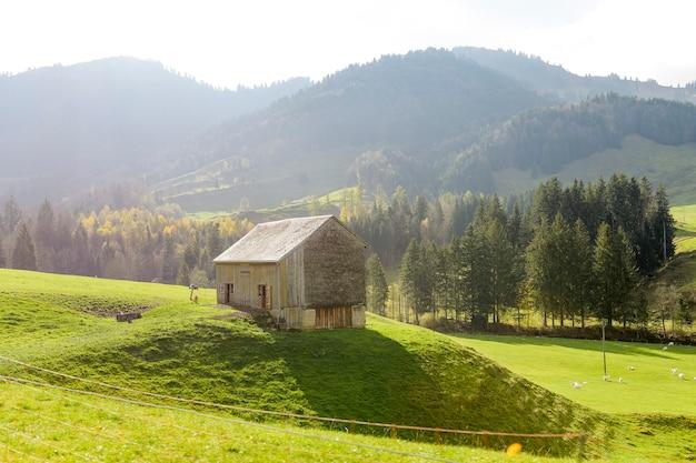 Het groene landschap van het plattelandsdorp bij de herfst in zwitserland