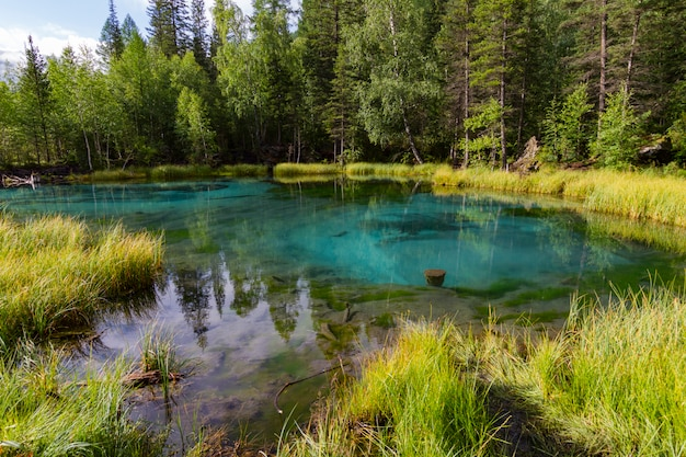Het groene thermale meer
