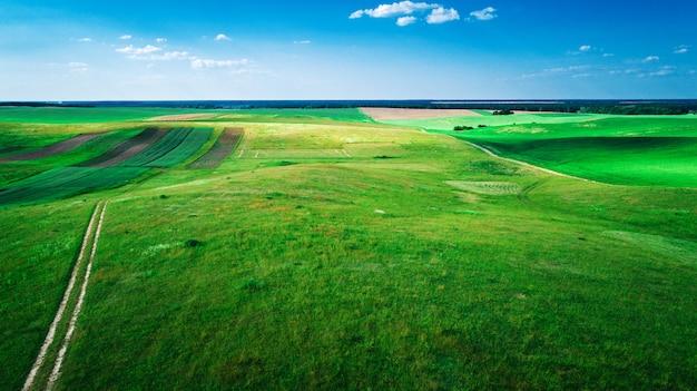 Het groene veld is bij zonsondergang geschoten met de drone