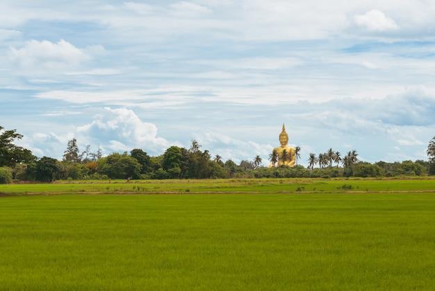 Het grote gouden standbeeld van boedha bij de provincie van wat muang temple angthong