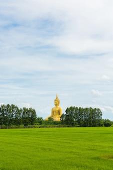 Het grote gouden standbeeld van boedha bij wat muang temple-angthong provincie