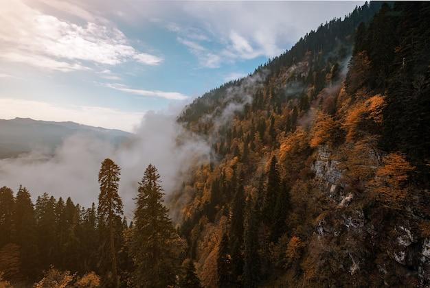 Het herfstlandschap in de bergen met kleurrijke bossen en hoge toppen van de kaukasus