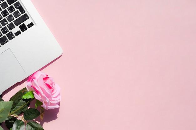 Het hoogste concept van het meningsbureau met roze achtergrond