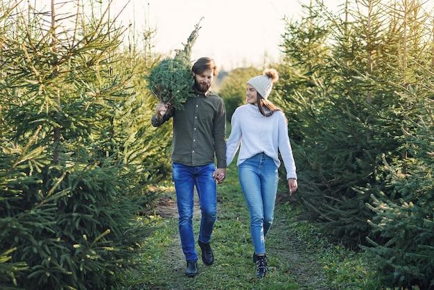 Het jonge gelukkige paar kocht verse kerstboom bij plantage die vakantie voorbereidt. gelukkig wintervakantie concept.