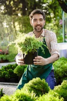 Het jonge knappe vrolijke tuinman glimlachen, die bloemen behandelt