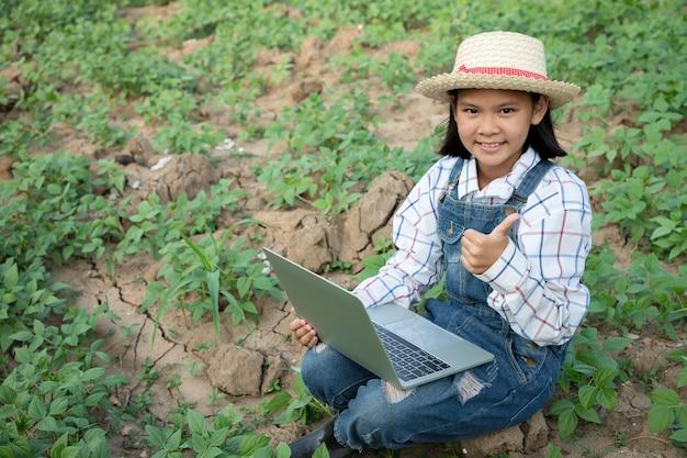 Het jonge meisje controleert en bewaart de opbrengst van mung bonenlandbouwbedrijf en gebruikt een geautomatiseerde laptop voor het controleren van kwaliteit. boer is een beroep dat geduld en toewijding vereist. een boer of tuinman zijn.