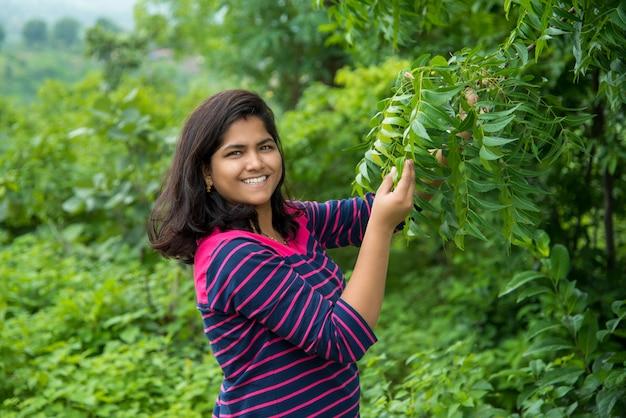 Het jonge meisje onderzoekt of neemt neem (azadirachta indica) boomblad waar bij gebied