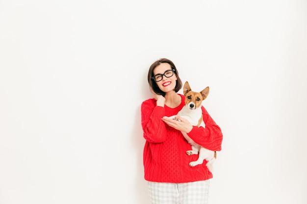 Het jonge vrouwelijke model met blije uitdrukking, draagt bril en rode sweater, houdt haar favoriete de terriërhond van jack russell