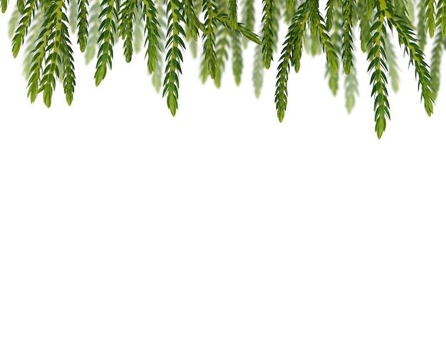 Het kader van bladeren van de rij groene installatie isoleerde witte achtergrond.