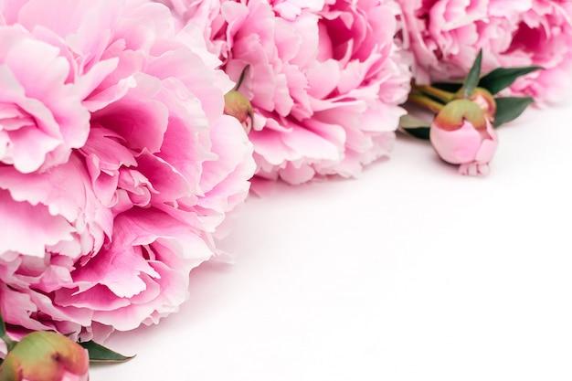 Het kader van roze pioenen sluit omhoog. sjabloon voor vakantiekaarten. kopieer ruimte, selectieve nadruk