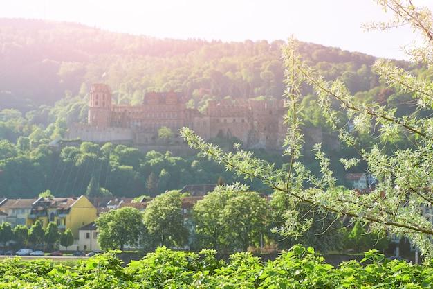 Het kasteel van heidelberg in de ochtendmist met de lentebladeren