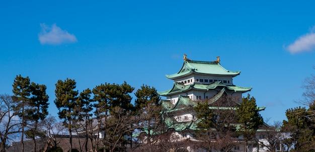 Het kasteel van nagoya en stadshorizon in japan