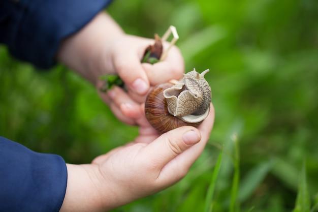 Het kind bestudeert de wereld. houdt een slak in haar handen.
