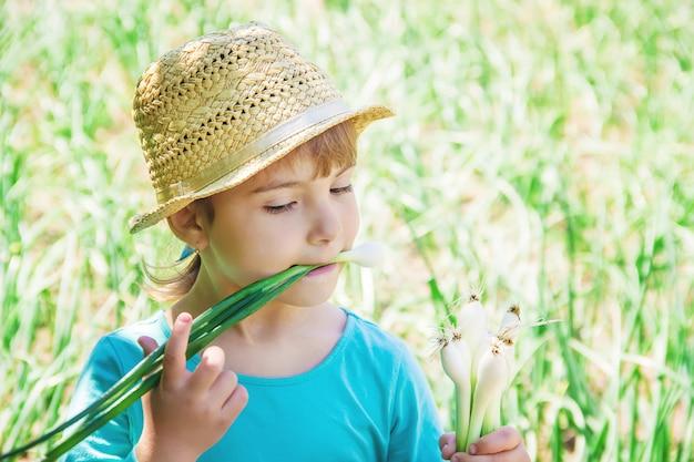 Het kind houdt een jonge groene boog. selectieve aandacht.