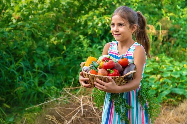 Het kind houdt groenten in zijn handen in de tuin. selectieve aandacht. kind.