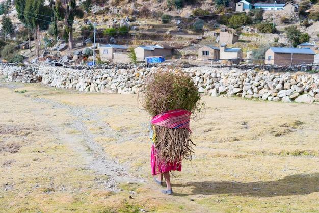 Het landelijke leven op het eiland van de zon, het titicacameer, bolivia