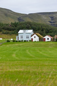 Het landschap van bergen met witte die ijslandse huizen opruimen