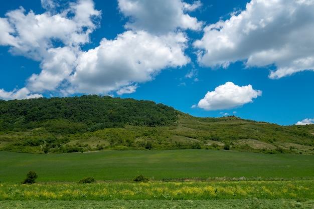 Het landschap van de zomer in bucovina, roemenië