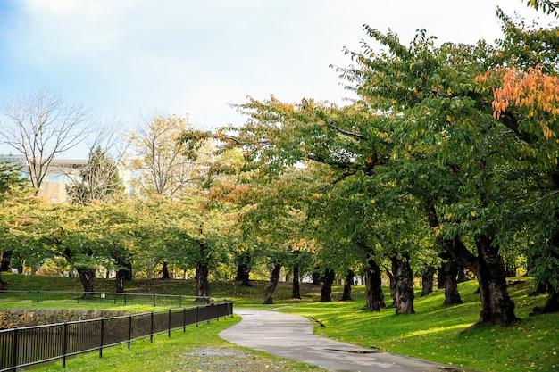 Het landschap van park met concept van ontspanning, het concept van de bewegingsvrijheidactiviteit.