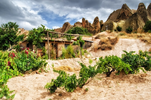 Het landschapsmening van het cappadocia dorp met blokhuis