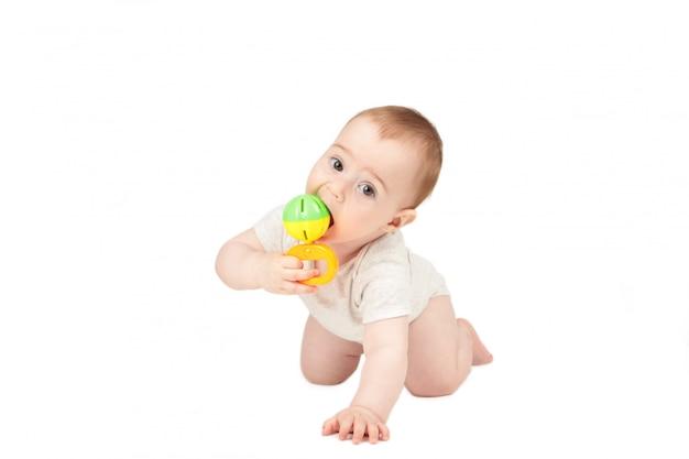 Het leuke babymeisje spelen met een rammelaar die op witte achtergrond wordt geïsoleerd