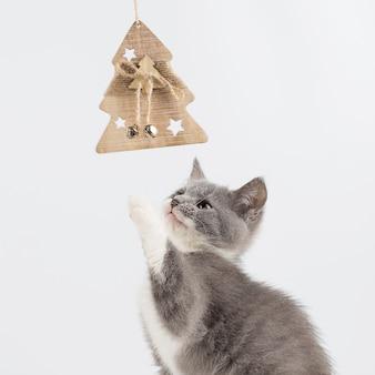 Het leuke grijze katje spelen met een kerstmisstuk speelgoed.
