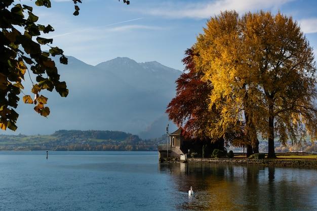 Het meer van thun, zwitserland