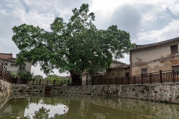 Het meer weerspiegelt het landschap, witte wolken en groene bomen