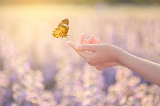 Het meisje bevrijdt de vlinder. concept vrijheid