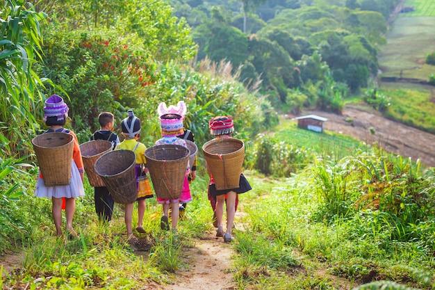 Het meisje en de jongen die een hmong-jurk dragen dragen een bamboemand op haar rug op het pad naar thei